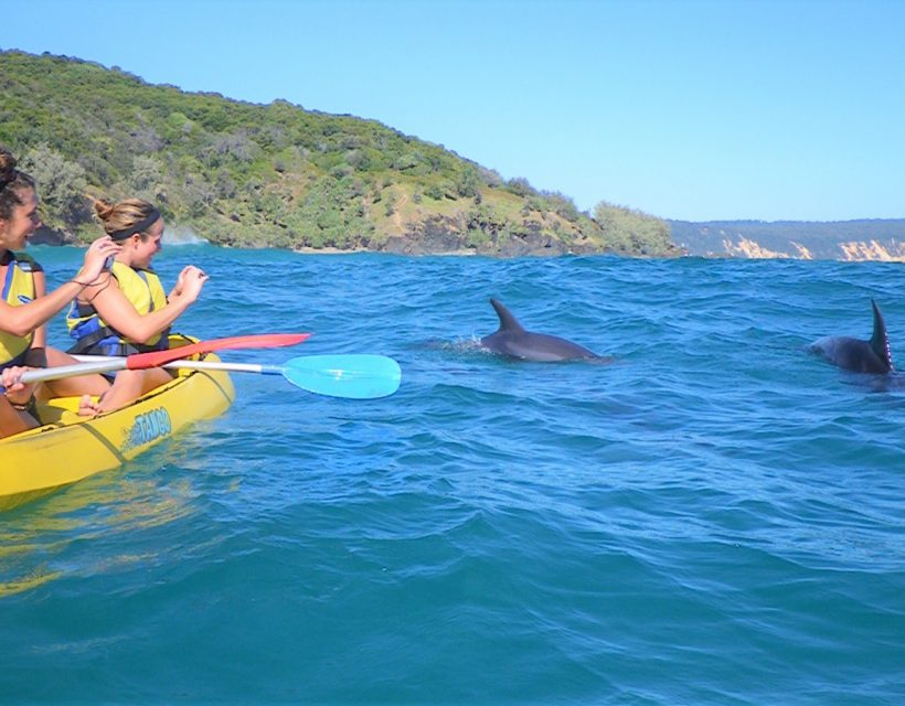 Rainbow Beach Dolphin kayak