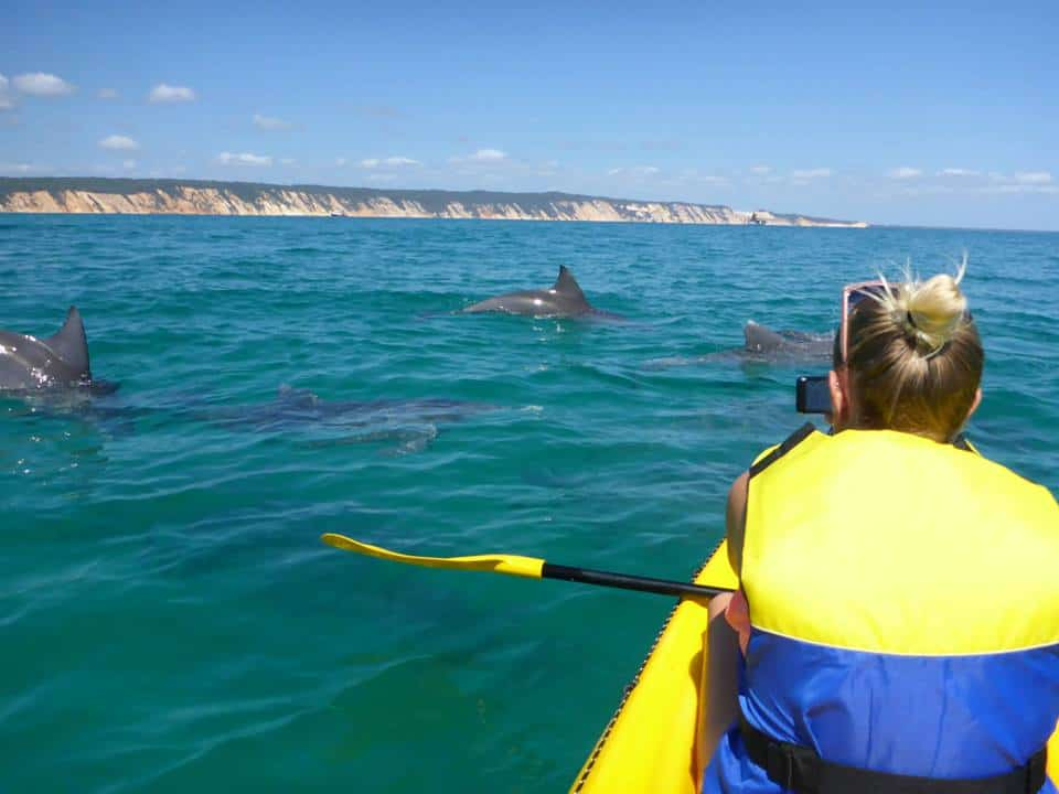Best time of year for Kayaking Tour